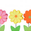 Three color wooden flowers — Stock Photo #22229841