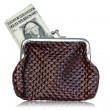 Brown leather purse with dollars — Stock Photo