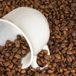 White cup with many coffee beans — Stock Photo