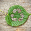 Green leaf with recycle symbol — Stock Photo #25964859