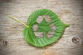 Folha verde com recicl o símbolo — Foto Stock