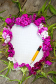 Wildflowers and empty paper — Stock Photo