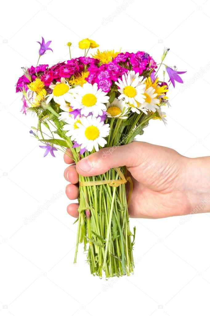 la main qui donne le bouquet de fleurs sauvages. Black Bedroom Furniture Sets. Home Design Ideas