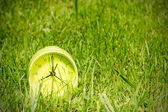 Alarm clock in grass on the morning — Stock Photo