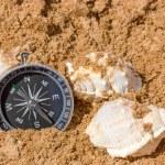 Kompass und Muscheln — Stockfoto #29347021