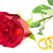 Red rose and wedding rings — Stockfoto