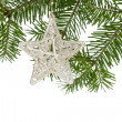 Christmas silver star on the fir branch — Stock Photo