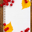 Autumn leaves and berries with a paper sheet — Stock Photo