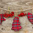 Christmas decoration with red berries — Stock Photo