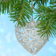 Silver heart on the fir branch — Stock Photo