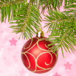 Red bauble on the fir branch — Stock Photo #31450693