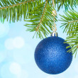 Fir branch with a blue bauble — Stock Photo