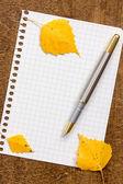 List papíru s perem a podzimní listí — Stock fotografie