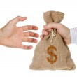 Hand giving a money bag — Stock Photo #31929789