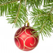 Stock Photo: Isolated fir branch with a red bauble