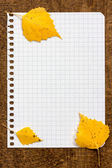 Autumnal leaves on the paper page notebook — Stock Photo