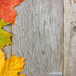 Autumn leaves and wooden planks — Stock Photo #32892853