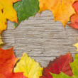 Autumnal leaves over wooden background — Stock Photo #32892857