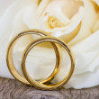 Golden wedding rings with white rose — Stock Photo