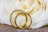 Alianças de casamento com rosa branca — Foto Stock