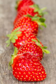 Ripe strawberries in a row  — Stock Photo