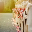 Row of chairs decorated for a wedding — Stock Photo
