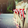 Stock Photo: Row of chairs decorated for wedding
