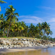 Incredible indibeaches, Black Beach, Varkala. Kerala, India. — Stock Photo #37745857