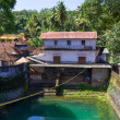 Stock Photo: Pool in Temple. Kerala, India