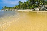 Incredible indian beaches, Black Beach, Varkala. Kerala, India. — Stock Photo