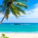 Tropical beach in Sri Lanka — Stock Photo #42151137