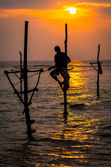 Silhouettes of the traditional fishermen at the sunset in Sri Lanka — Stock Photo