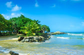 Tropical beach in Sri Lanka — Stock Photo