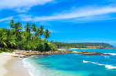 Tropical beach in Sri Lanka — Stockfoto