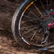 Rear wheel red mountain bike — Stock Photo #34160107