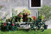 Old wooden cart with colorful flowers — Stock Photo