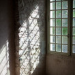 Window in old castle — Stock Photo #13367316