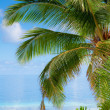 Beach on tropical island — Stock Photo