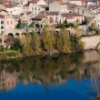 River Tarn in Albi, France — Stock Photo