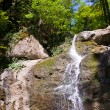 Water cascade in forest — Stock Photo