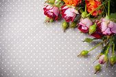 Mångfärgade rosor på grått linne tyg — Stockfoto