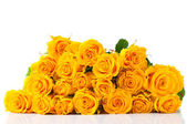 Bouquet of yellow roses isolated — Stock Photo
