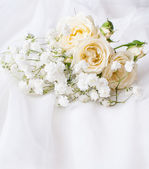 White roses on a white tulle — Stock Photo