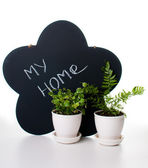 Potted plants and a chalk board — Stock Photo