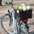 Bicycle with a basket full of tulips - Stock Photo