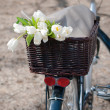 Bicycle with a basket full of tulips — Stock Photo #22762514