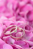 Pair of wedding rings on flowers — Stock Photo