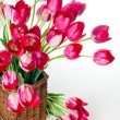 Bright pink tulips in a wicker basket — Stock Photo