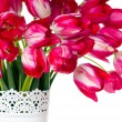 Bright pink tulips in a white vase - Stock Photo