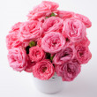 Bouquet of bright pink roses isolated — Stock Photo